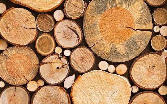 madeiras-em-curitiba